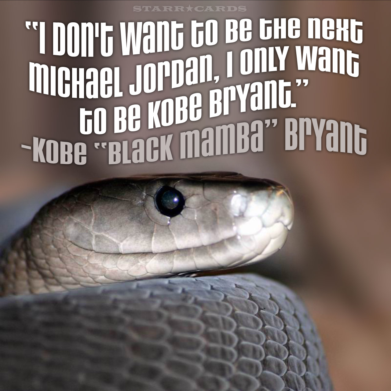 "Kobe Brayant aka ""Black Mamba"" quote about being the next Michael Jordan"
